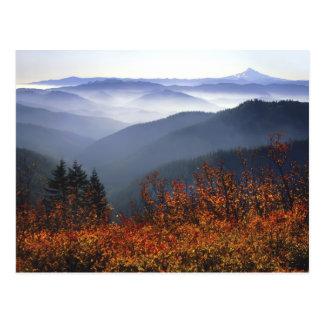 USA, Washington, Columbia River Gorge National Postcard