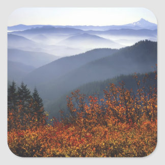 USA, Washington, Columbia River Gorge National Square Sticker