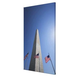 USA, Washington, D.C. American flags at the Canvas Print