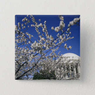 USA, Washington DC. Cherry Blossom Festival and 2 Button