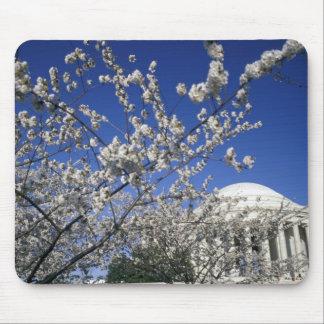 USA, Washington DC. Cherry Blossom Festival and 2 Mouse Pad