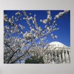 USA, Washington DC. Cherry Blossom Festival and 2 Poster