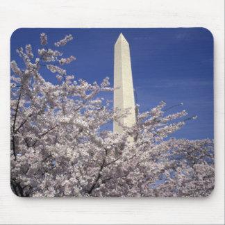 USA, Washington DC. Cherry Blossom Festival and Mouse Pad