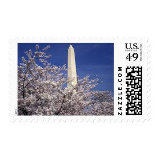 USA, Washington DC. Cherry Blossom Festival and Stamp