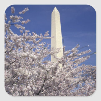 USA Washington DC Cherry Blossom Festival and Stickers
