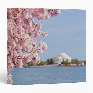 USA, Washington DC, Cherry tree 3 Ring Binder