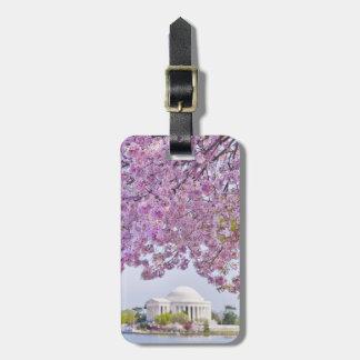 USA, Washington DC, Cherry tree in bloom Bag Tag