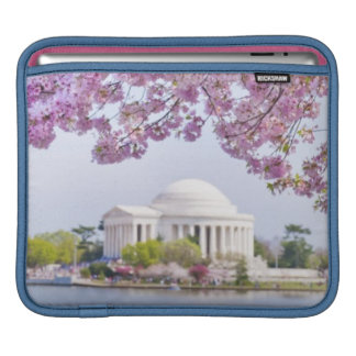 USA, Washington DC, Cherry tree in bloom iPad Sleeves