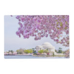 USA, Washington DC, Cherry tree in bloom Laminated Place Mat