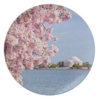 USA, Washington DC, Cherry tree Melamine Plate