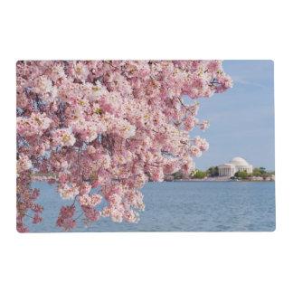 USA, Washington DC, Cherry tree Placemat