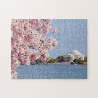 USA, Washington DC, Cherry tree Puzzles