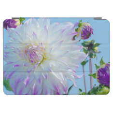 Usa, Washington. Detail Of Dahlia Flowers Ipad Air Cover at Zazzle