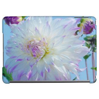 USA, Washington. Detail Of Dahlia Flowers Case For iPad Air
