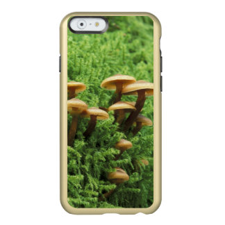 USA, Washington. Ferns and mushrooms Incipio Feather® Shine iPhone 6 Case