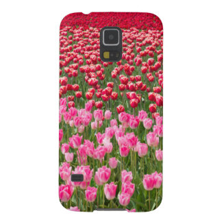 USA, Washington. Field Of Multicolored Tulips Galaxy S5 Case