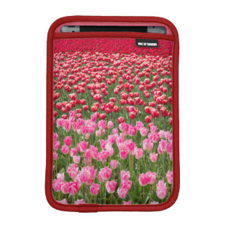 USA, Washington. Field Of Multicolored Tulips Sleeve For iPad Mini