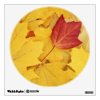 USA, Washington, Finch Arboretum, Red and Wall Sticker