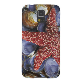 USA, Washington, Hood Canal, Seabeck. Close-up Case For Galaxy S5