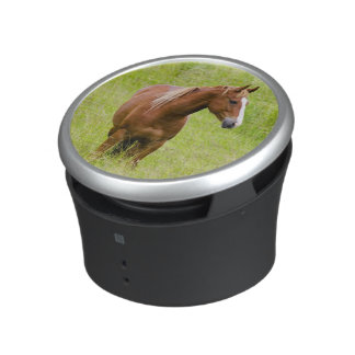 USA, Washington, Horse in Spring Field, Bluetooth Speaker
