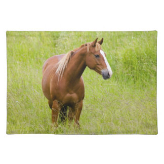 USA, Washington, Horse in Spring Field, Placemats