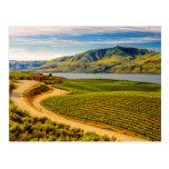 USA, Washington, Lake Chelan. Benson Vineyards Postcards