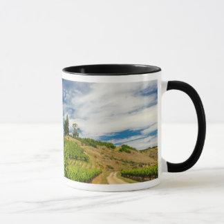 USA, Washington, Lake Chelan. Vineyard 3 Mug
