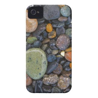 USA, Washington, Lopez Island, Agate Beach Case-Mate iPhone 4 Case