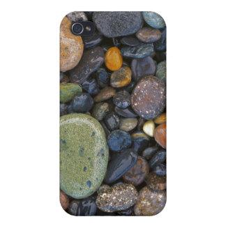 USA, Washington, Lopez Island, Agate Beach iPhone 4 Cover