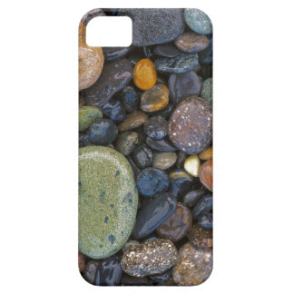 USA, Washington, Lopez Island, Agate Beach iPhone SE/5/5s Case