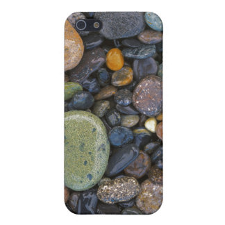 USA, Washington, Lopez Island, Agate Beach iPhone SE/5/5s Cover