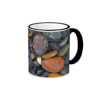 USA, Washington, Lopez Island, Agate Beach Coffee Mugs
