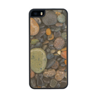 USA, Washington, Lopez Island, Agate Beach Wood iPhone SE/5/5s Case