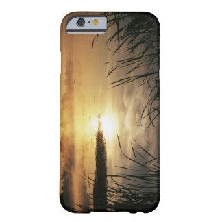 USA, Washington, Lopez Island, Morning fog on Barely There iPhone 6 Case