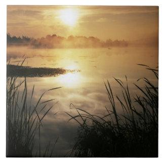 USA, Washington, Lopez Island, Morning fog on Ceramic Tile