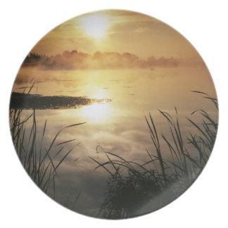 USA, Washington, Lopez Island, Morning fog on Dinner Plate