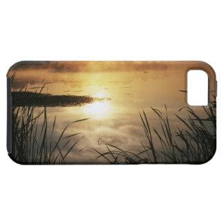 USA, Washington, Lopez Island, Morning fog on iPhone SE/5/5s Case