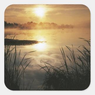 USA, Washington, Lopez Island, Morning fog on Square Sticker