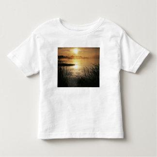 USA, Washington, Lopez Island, Morning fog on T Shirt