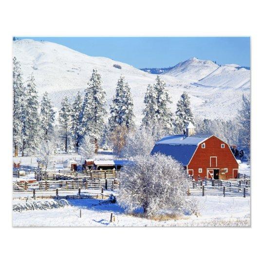USA, Washington, Methow Valley, Barns in Photo Print
