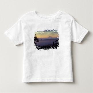 USA, Washington. Mount St. Helens seen through Toddler T-shirt