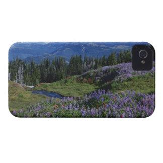 USA, Washington Mt. Adams Wilderness, Meadows iPhone 4 Covers