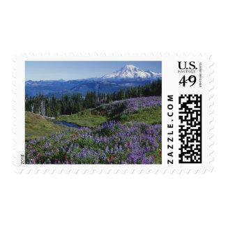 USA, Washington Mt. Adams Wilderness, Meadows Postage Stamp