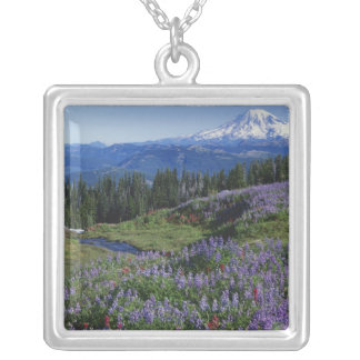 USA, Washington Mt. Adams Wilderness, Meadows Silver Plated Necklace
