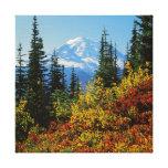 USA, Washington, Mt. Rainier National Park 2 Canvas Print
