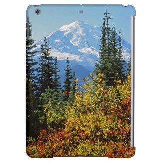 USA, Washington, Mt. Rainier National Park 2 Case For iPad Air