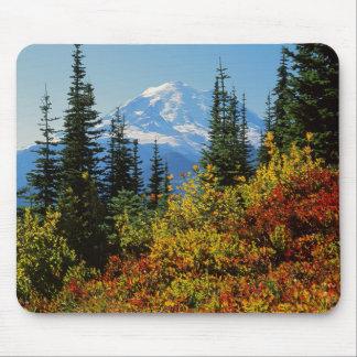 USA, Washington, Mt. Rainier National Park 2 Mouse Pad