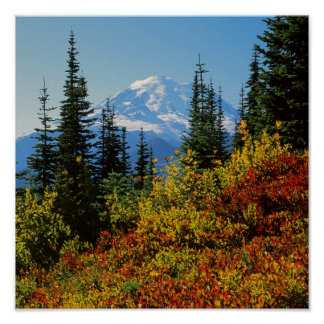 USA, Washington, Mt. Rainier National Park 2 Poster