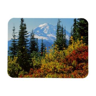 USA, Washington, Mt. Rainier National Park 2 Rectangular Photo Magnet