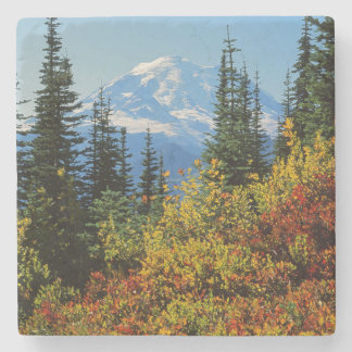 USA, Washington, Mt. Rainier National Park 2 Stone Coaster